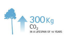 absorb 300kg CO2 in 10 years